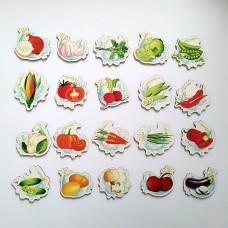 Детские магнитики с овощами