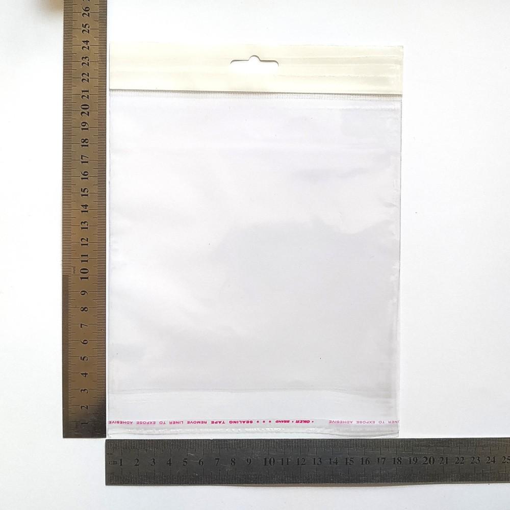 Пакет поліпропіленовий 180*180 мм з єврослотом